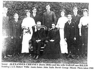 Chesney family in Ireland